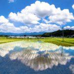 日本(にほん)の魅力(みりょく)を写真(しゃしん)で伝(つた)える 経済産業省(けいざいさんぎょうしょう)の「PHOTO METI PROJECT」